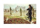 Ben öldükten sonra…
