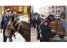 At Arabacıları Trafikte ölüm saçıyorlar
