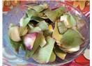 Enginar yaprağı nasıl kurutulur ve enginar çayı nasıl yapılır?