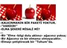 Batılıların yükselişini fark eden Osmanlılar, onları Teknoloji üretiminde geçen Japonlar oldu (8)
