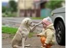Hayvanları sevmeyen biri, insanları sevebilir mi?