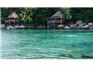 Tayland (koh tao, koh pha ngan, koh samui) gezi notları
