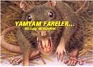 Yamyam fareler…