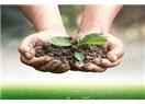 Toprağın şifalı etkisi