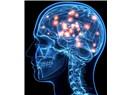 İnsan beyninin karanlık geleceği