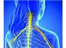 Boyunda sinir sıkışmasının sinirlere etkisi ve tedavisi