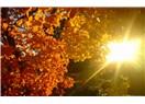 Günlükten bir sonbahar