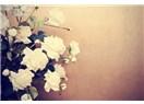 Çiçekler İlkbahar'da dile geldi