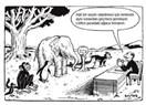 Farklılıklarımıza rağmen aynı sınav adil midir?