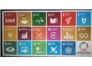 BM 2030 sürdürülebilir kalkınma hedefleri