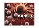 Kanser ve Psikoterapi ( Psiko-onkoloji)