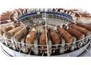 Tarım politikaları kooperatiflersiz düşünülemez