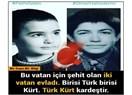Fethi Sekin ve Ömer Halisdemir, cennette birleşen iki hayat…