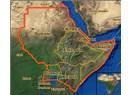 Afrika Boynuzu'nun geleceği Etiyopya mı?