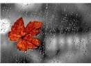 Hazan yağmuru