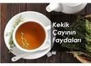 Kekik mucizesi – Kekik çayının faydaları