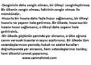 Referandum CHP ve rejimi kurtaracaktır: CHP, Ne Osmanlı ne Fransız Aydınlanması peşindedir (3)