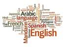 Nasıl bir dil eğitimi istiyorum?