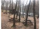 Haftasonu Belgrad Ormanı mangal keyfi
