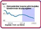 Türkiye'nin buğday gerçeği