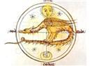Ay düğümleri aslan-kova aksında: karma yeni evresinde