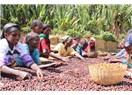 Etiyopya Doğu Afrika'nın En Büyük Ekonomik Devi olma Yolunda