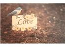 Sevgiyle yoğrulmak