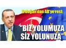 Türkiye batı medeniyetinden ayrılmak istiyorsa Avrupa ülkelerinin yerinde olsam yardımcı olurum