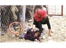 Merhamet duygusu ve Suriyeli mülteciler / sığınmacılar...