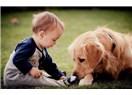 Köpek ve İnsan
