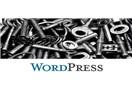 WordPress Şifremi Unuttum - Ne Yapmalıyım