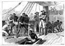 Çalılara Takılmış Sorular - Kölecilik