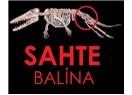 Balina Evrimi Yalanı
