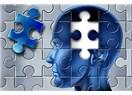 Sağlıksız Beslenmek Beyni Küçültüyor