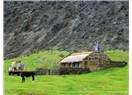 Teknoloji Var Suç Yok Tristan da Cunha Adası