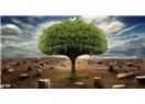 Ağaç Gözüyle Şiirler: 1