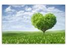 Aşk Diye Savrulup Durma