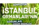İstanbul'un %44'ü Orman ise Kimse Dışarıdan Gelenler İçin Allah'ın Dağından Gelmiş Diyemez