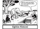 Türkiye'de Kadavraya Dönüşen Eğitim Sistemi