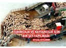 Tarımcılık ve Hayvancılık İçin Bir Şey Yapılmadı