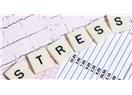 Stresi Hepimiz Yaşıyoruz Ama Onu Yeterince Tanıyor Muyuz?