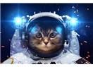 01 - 07 Ocak 2018 Haftalık Burç Astroloji: 06 Ocak Ay, Mars & Jüpiter Süper ama Merküre Dikkat !