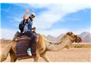 İyi Hizmet Güler Yüzü Geç, Turistin İsteği Yamyamlar Ülkesine Gidip Yenilmeden Dönmektir