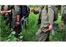 PKK Silah Bırakmaya mı Gidiyor?
