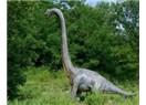 Dinozorlar Halen Yaşıyor Olabilir mi?
