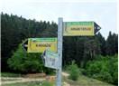Safranbolu – Yenice Ormanları: Trekking Bahane, Yeşil ile Kavuşmak Şahane