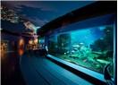 İstanbul'daki Hayvanat Bahçeleri ve Akvaryumlar