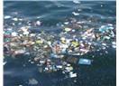 Denizlerimiz Pis