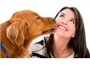 Köpeklerde Dişeti Çıbanı Olarak Bilinen Tümörler...