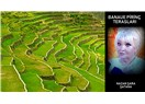 Filipinler'in Saklı Mücevheri; Banaue Pirinç Terasları